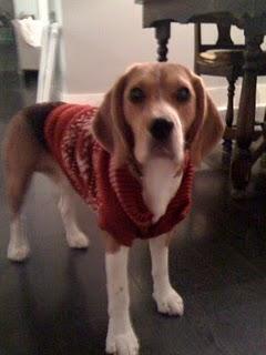 ham002bred002bsweater
